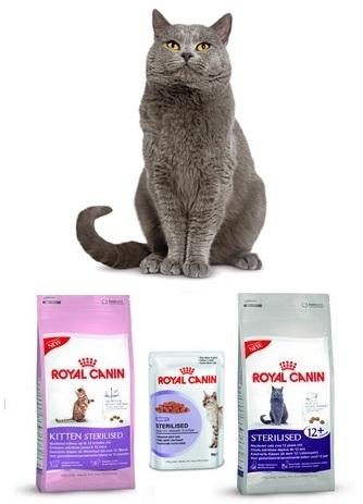 Новинки в гамме продуктов для стерилизованных кошек и кастрированных