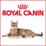 Мой Royal Canin