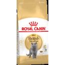 Royal Canin British Shorthair Cat