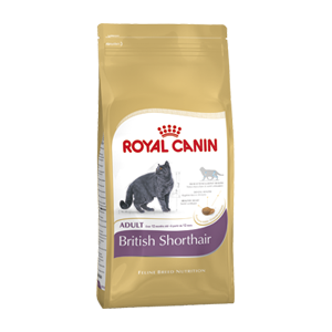 Royal Canin British Shorthair Cat