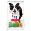 Hill's SP Youthful Vitality 7+ Medium dog