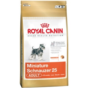 Royal Canin Miniature Schnauzer Dog