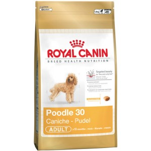 Royal Canin Poodle Dog