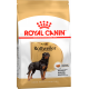 Royal Canin Rottweiler Dog