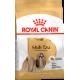 Royal Canin Shih Tzu Dog