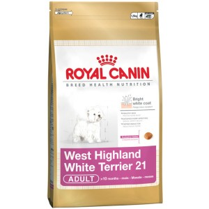 Royal Canin West Highland White Terrier Dog