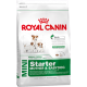 Royal Canin Mini Starter Junior