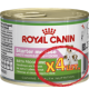Royal Canin Starter Mousse Wet Junior
