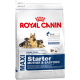 Royal Canin Maxi Starter Junior