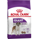 Royal Canin Giant Adult Dog