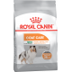 Royal Canin Mini Coat Care