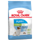Royal Canin X-Small Pappy
