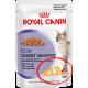 Royal Canin Digest Sensitive (кусочки в соусе) Cat