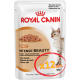 Royal Canin Intense Beauty (кусочки в соусе) Cat