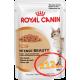 Royal Canin Intense Beauty (кусочки в соусе) Cat