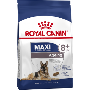 Royal Canin Maxi Ageing 8+ Dog