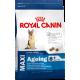 Royal Canin Maxi Ageing 8+ Dog