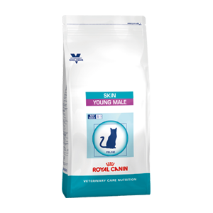 Royal Canin Cat Skin Young Male