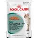Royal Canin Instinctive +7 (кусочки в соусе) Cat