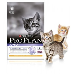 Pro Plan Junior Kitten