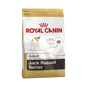 Royal Canin Jack Russell Dog