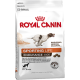 Royal Canin Endurance 4800 Dog