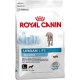Royal Canin Urban Junior Large Dog