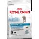 Royal Canin Urban Junior Large Dog