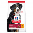 Hill's SP Canine Adult Dog Large Breed Chicken