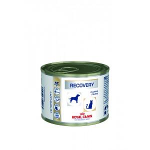 Royal Canin Cat Dog Recovery (банка) Wet
