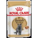 Royal Canin British Shorthair Adult (в соусе) Cat