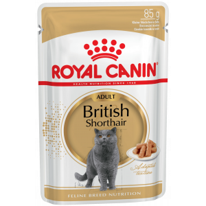 Royal Canin British Shorthair Adult (в соусе) Cat