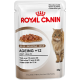 Royal Canin Ageing +12 (кусочки в желе) Cat