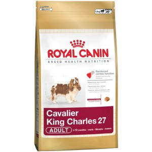 Royal Canin Cavalier King Charles Dog