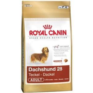 Royal Canin Dachshund Dog