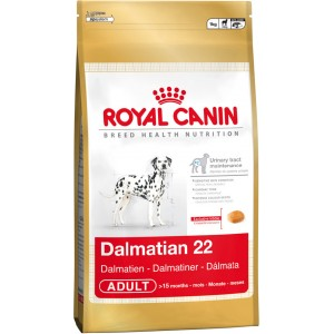 Royal Canin Dalmatian Dog