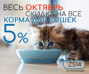 Скидка 5 процентов на корм для кошек